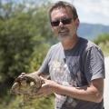 """griechische Landschildkröte in der Zagoria - """"Land hinter den Bergen"""" (Epiros); 27.05.2013"""