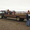 mit dem Truck zu den Papageientauchern (Ingólfshöfði); 26.07.2006