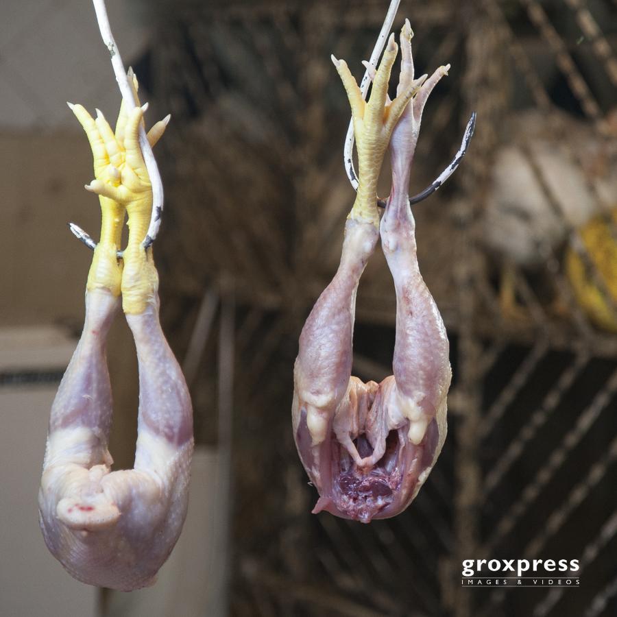 Hühnerteile (Marrakech)